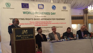 Secretary Fisheries (Sindh) addressing participants on WFD – 2014