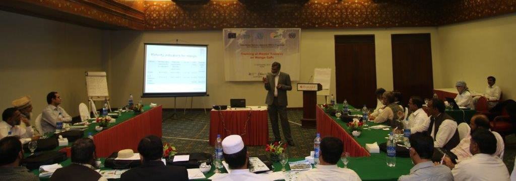Prof Dr. Amanullah from UAF discussing post-harvest techniques for mangoes