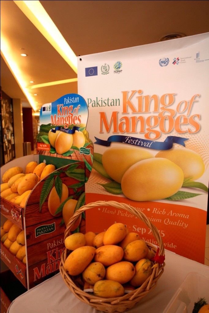 The stars of the Pakistan King of Mangoes Festival launch pavilion